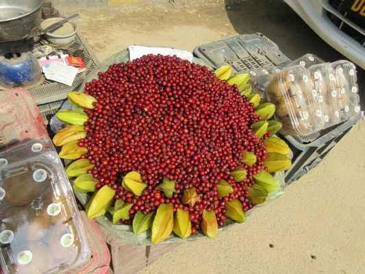 """Granátové jablko je aromatické ovoce se sladkokyselou chutí, plod granátovníku obecného, latinsky Punica granatum, starším českým termínem se nazývá marhaník granátový.  Karambola nebo čínská hvězdice je ovoce stromu Averrhoa carambola. Nejčastěji se jí čerstvé v exotických ovocných salátech nebo jako ozdoba pohárů a nápojů. Před konzumací se odstraní hnědá žebra a plod se nakrájí na plátky. Vzniknou tak velmi dekorativní hvězdy. (Proto se v anglickojazyčných zemích tomuto ovoci říká starfruit – """"hvězdicové ovoce"""".)"""
