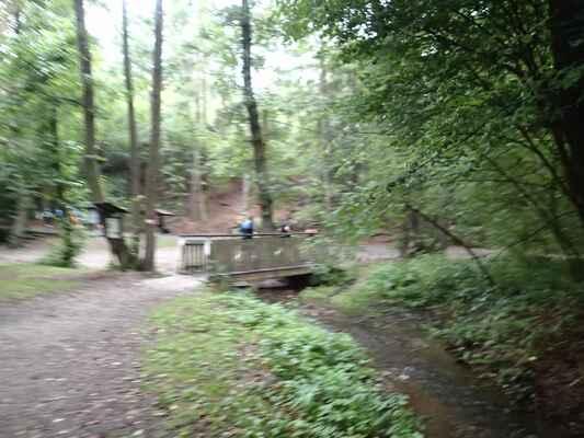 Lávka přes Lomanský potok u studánky Prelátky. Nezaostřeno kvůli pohybu a zhoršeným světelným podmínkám:-)