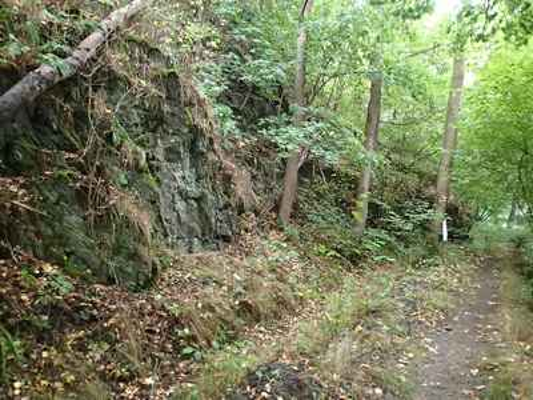 Stezka podél starého mlýnského náhonu (před Frantovým mlýnem).