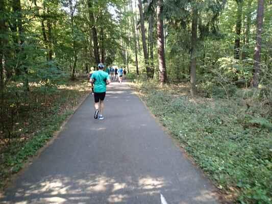 Lesoparkem Lapákem - asfaltová rovinka, po které se dříve maraton neběhal