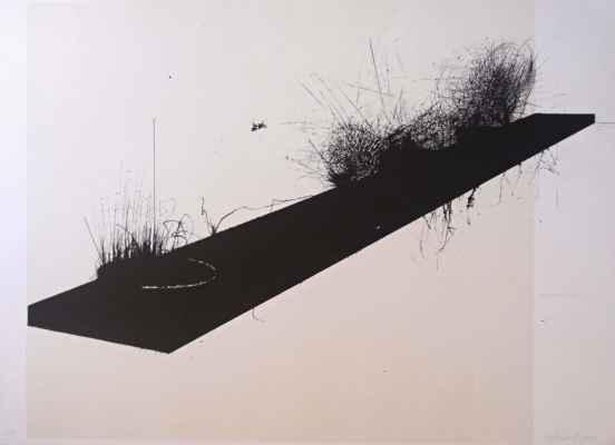 """44. Lindovský Jiří """"Podzim na polici"""", grafický list, 50x70cm; 2005; 3 000 Kč"""