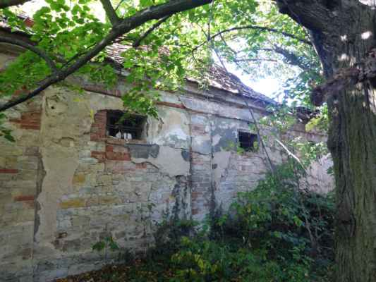 Ruiny zámku v Brocně