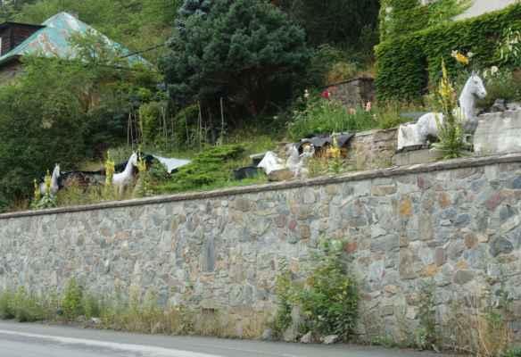 Koně u Marjány.